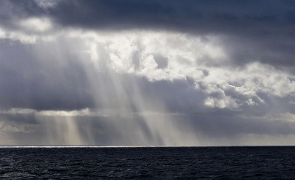 Picture of a Squall