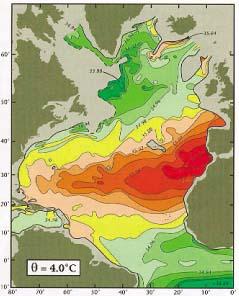 Salt Contours North Atlantic