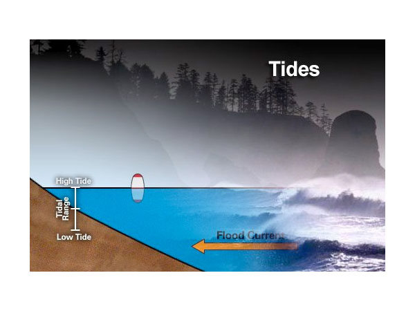 NOAA Ocean Explorer Education  Multimedia Discovery
