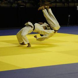 2016 OJU-Kodokan Kata Seminar and  OJU and Sydney International Open Kata Championships
