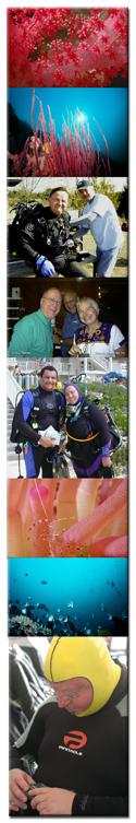 Recreational Diving Photos