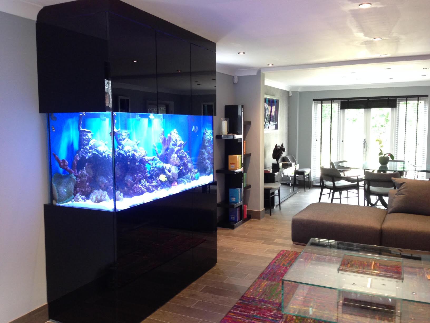 Custom Designer Aquarium In Derbyshire Oceanlife Aquatics