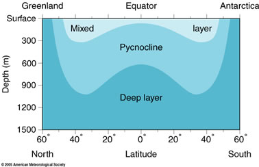 depiction of mixed layer above pycnocline above deep layer betwen greenland and antarctica, description follows