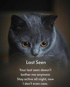 Last seen quotes