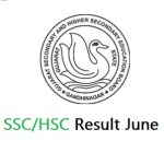 GSEB SSC/HSC Result June 2020