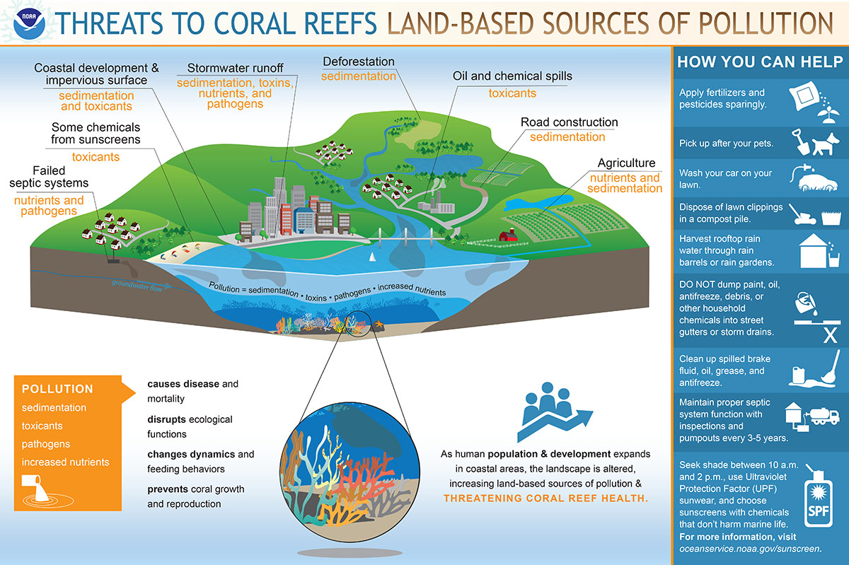 hight resolution of infographic showing threats to coral reefs pollution