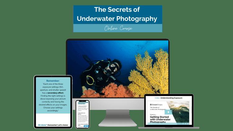 Underwater Photo Online Course