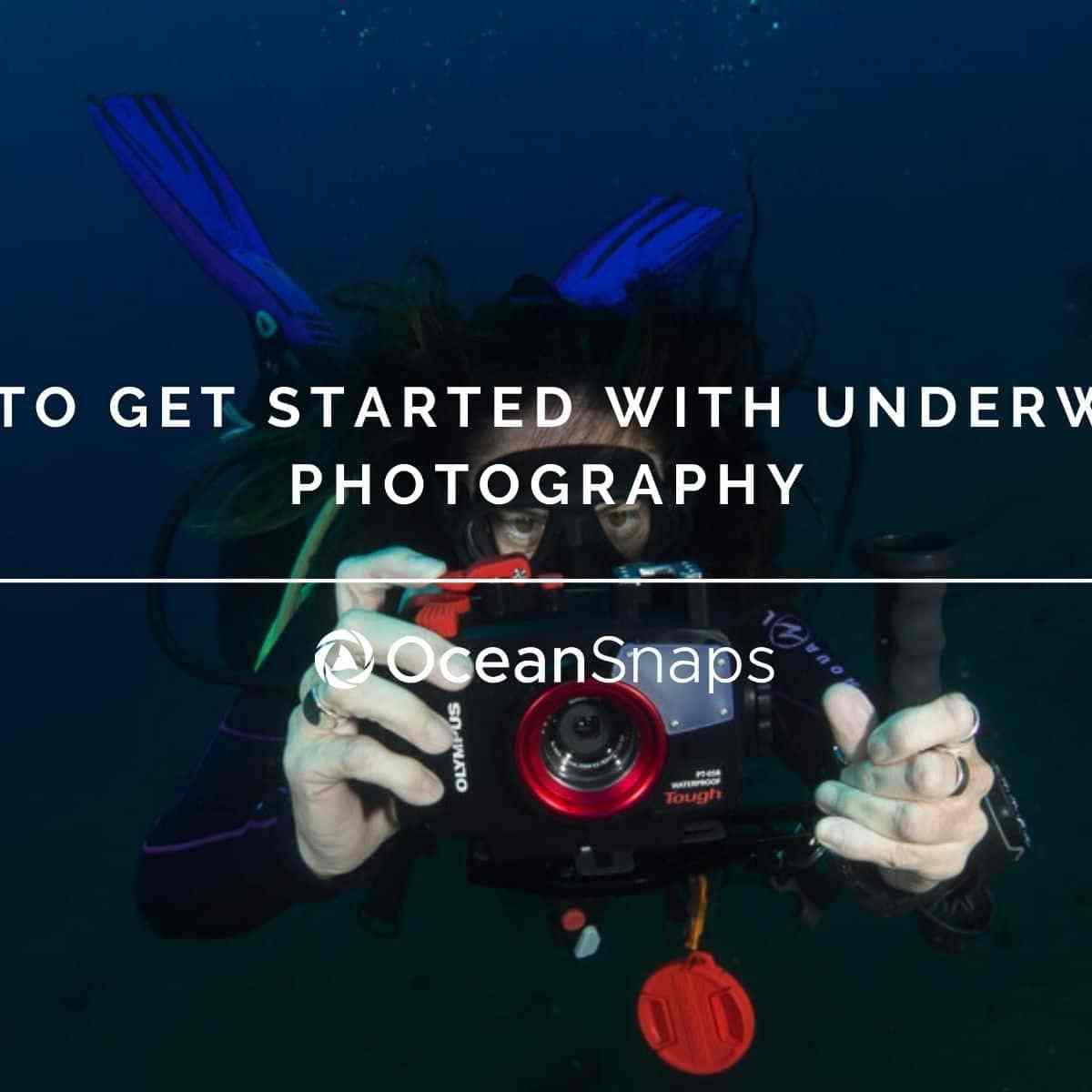 Get started underwater photography