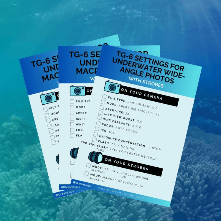 TG 6 underwater settings