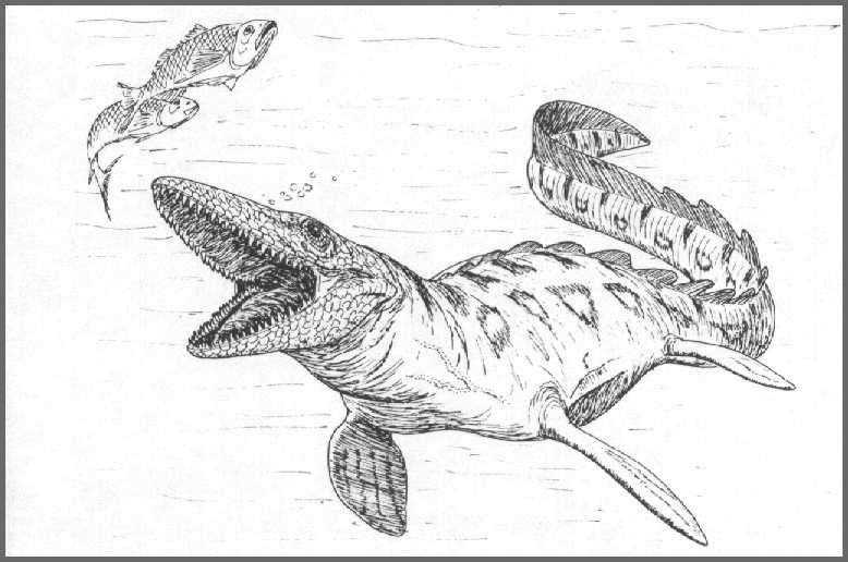 Mesozoic Marine Monsters of Mangahouanga