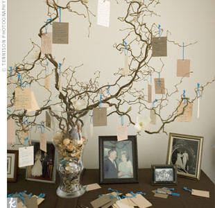 What is a Wishing Tree for Weddings  Ocean State Occasions