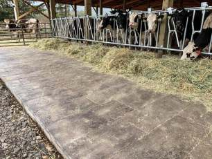 barn wood plank concrete floors for horse barns or show barns