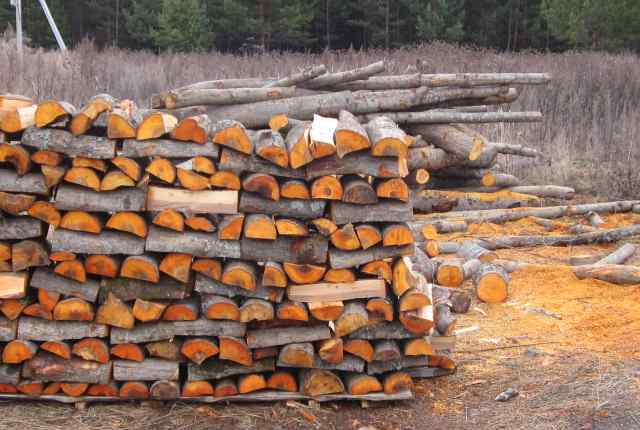 pierde in greutate toaca lemnul