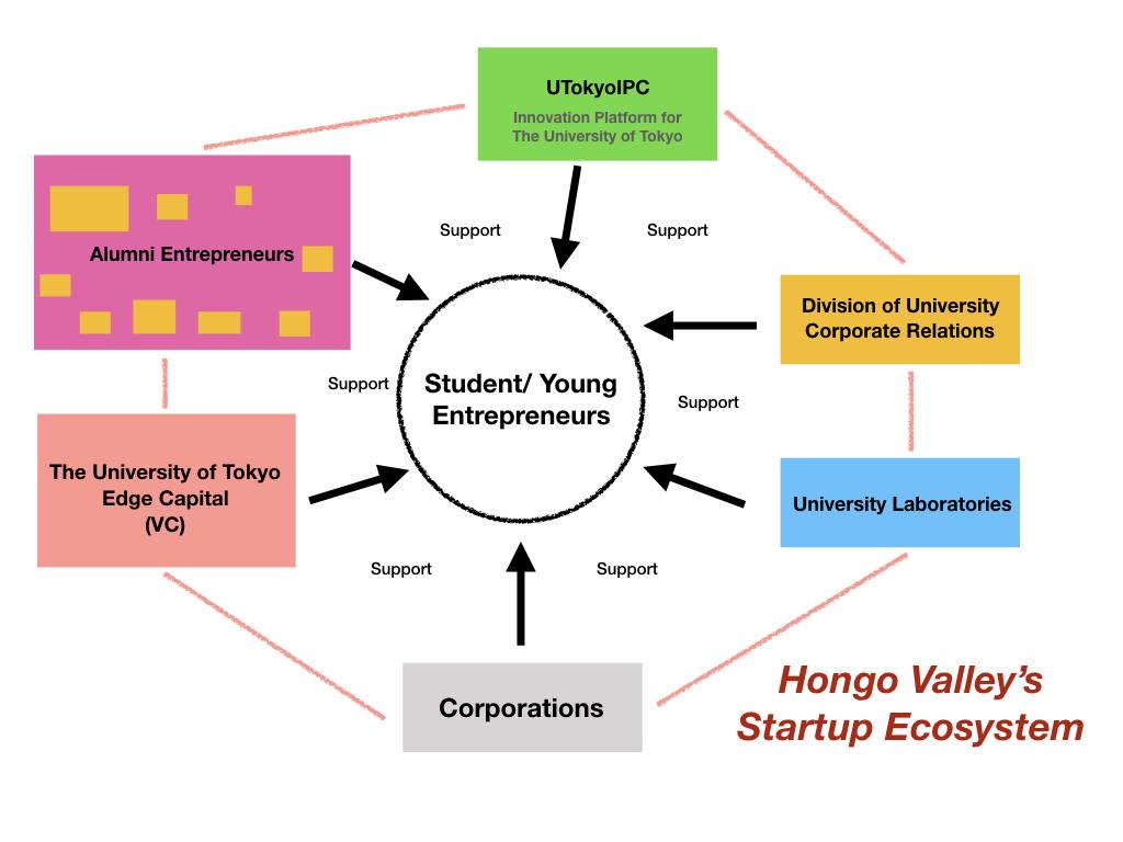 hight resolution of hongo valley s ecosystem