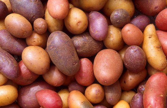 Лечение сырой картошкой ~ Мой опыт