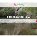 Andalucía estrena nueva web de Turismo