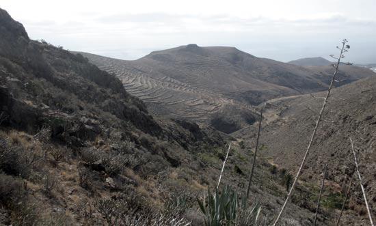 Barranco de Tenegüime, Los Valles, Guatiza, Lanzarote