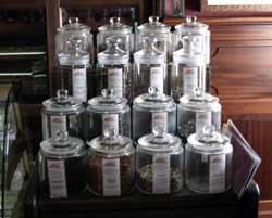 Variedad de té en Cafetería Cejas, Teguise, Lanzarote