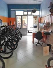 interior-local-dromedary-by-bike