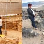 Visitas guiadas a los los yacimientos arqueológicos de Fiquinineo y Zonzamas