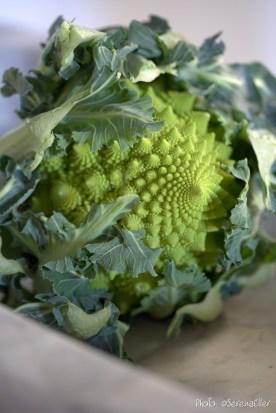 Broccolo Romanesco :: Sale e Pepe Magazine | Food Styling: Orsola Ciriello Kogan | Styling: Cristina Gigli | Photo: ©SerenaEller