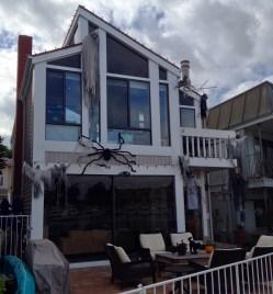 Huset täckt av spindlar - iiiihhhh!