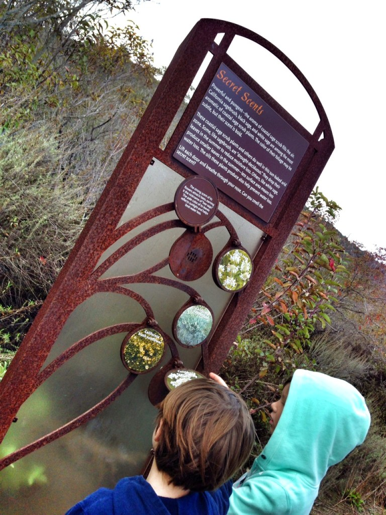 Educational Learning Opportunities in the Laguna Coast Wilderness Park
