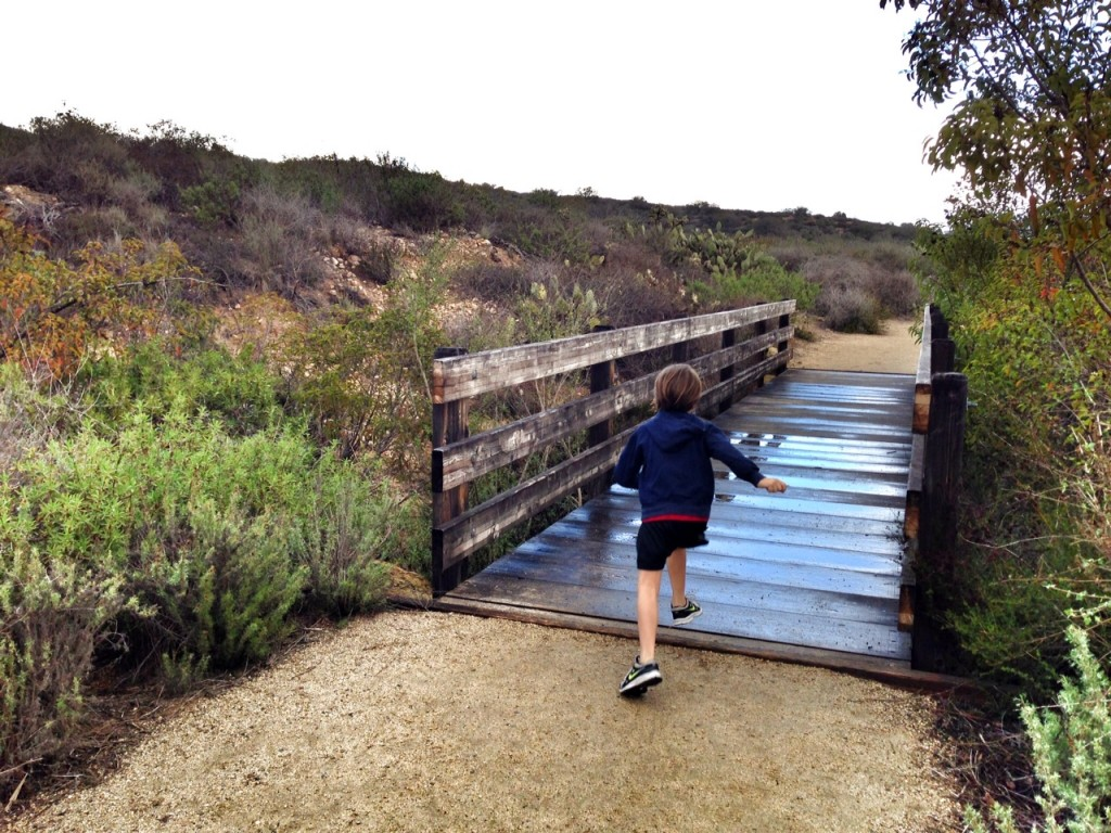 Running across a bridge in the Laguna Coast Wilderness Park