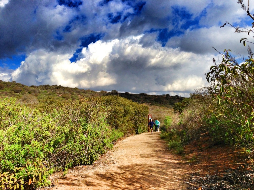 Hiking along Mary's Trail in Laguna Beach