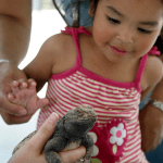 "Be ""Wild at Heart"" at the OC Zoo"