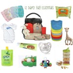 12 Diaper Bag Essentials