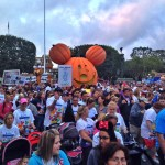 2015 CHOC Walk in the Park at the Disneyland Resort
