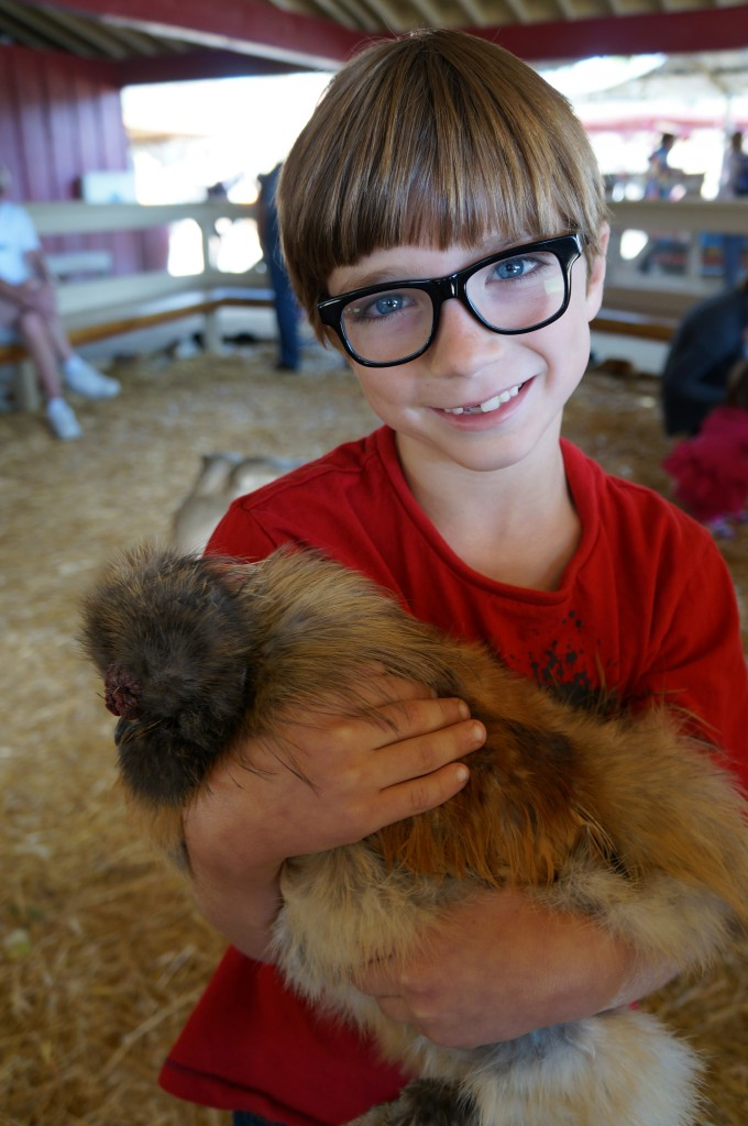 Kid Holding a chicken