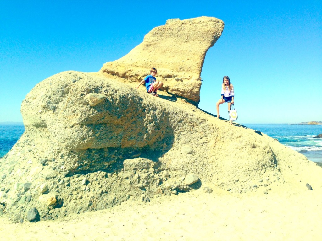 Camel Rock Laguna Beach