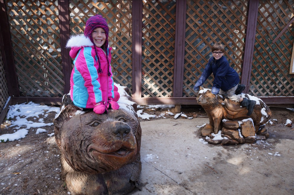 Big-Bear-Zoo-9