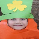 2014 Orange County St. Patrick's Day Events