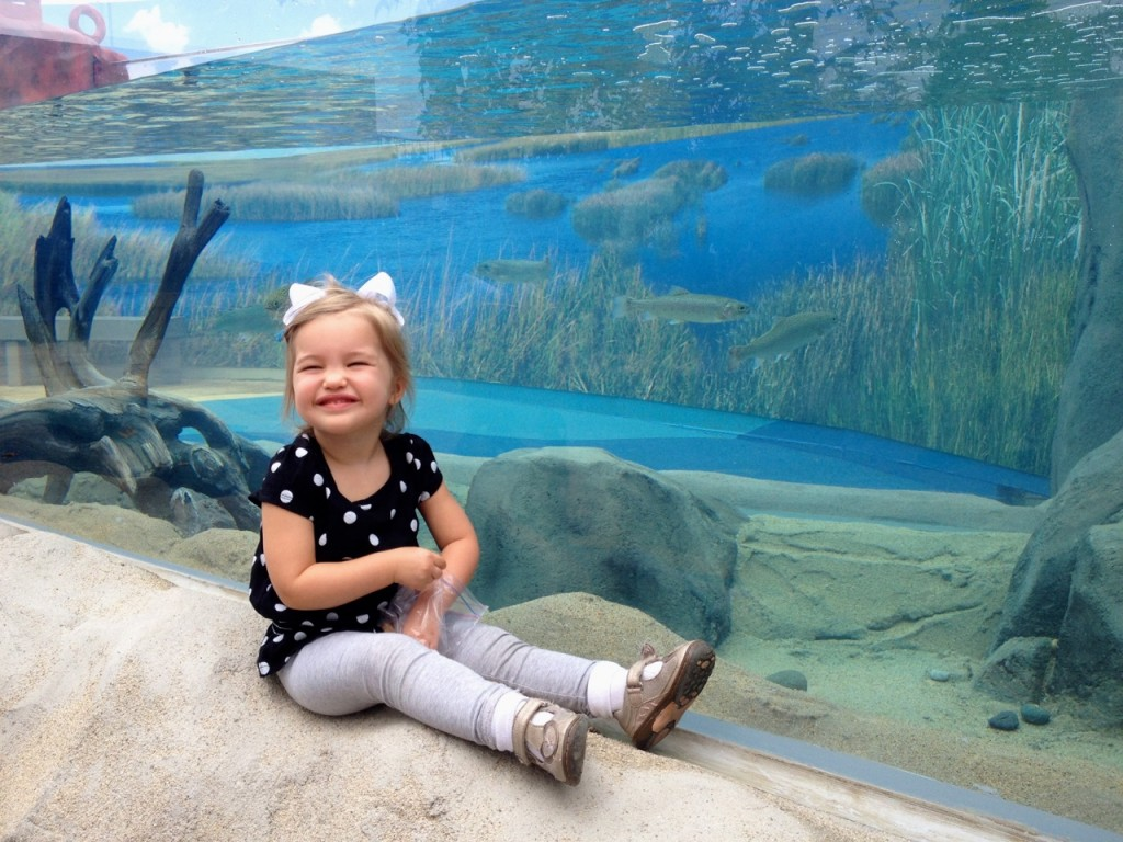 Summer of Wonder at the Aquarium of the Pacific