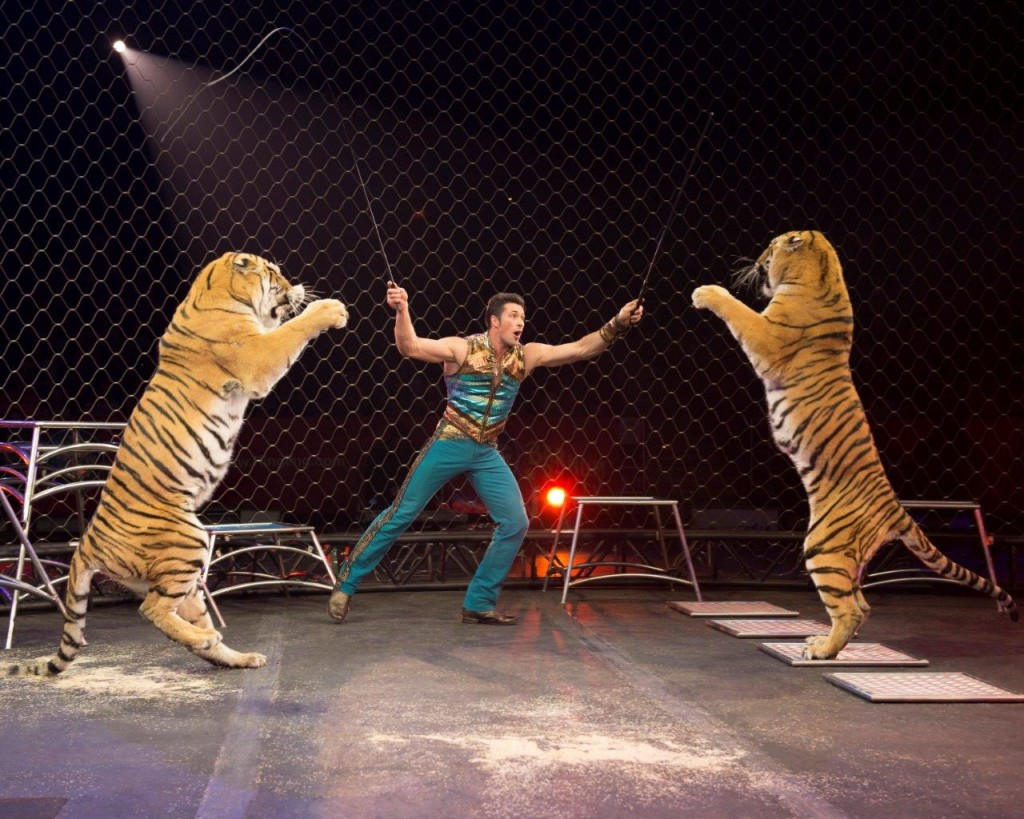 Alex Lacey and Big Cats - CREDIT Feld Entertainment