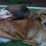 Finding a Pet Trainer with Job Quotes