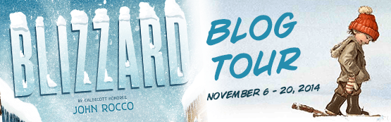 Blizzard blog tour banner