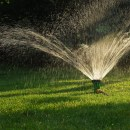 4 Simple Water Conservation Tips