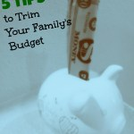 Trim the Family Budget Before the Holidays