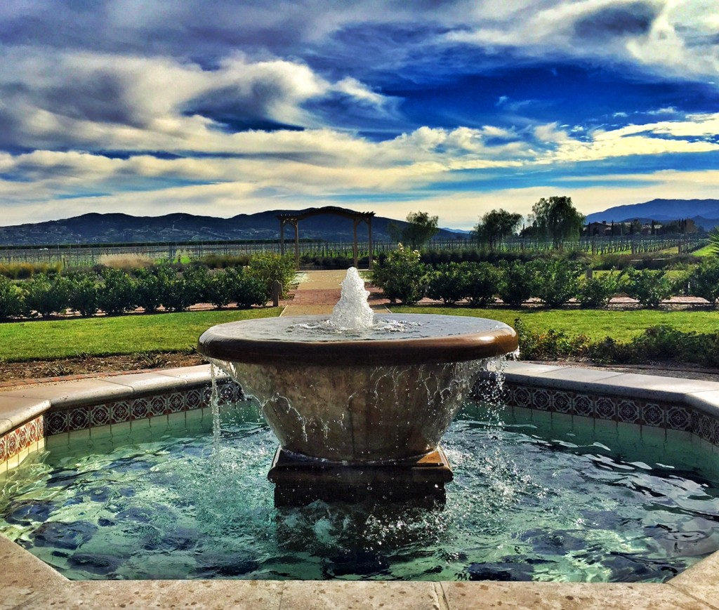 Fountain in the vineyard at Ponte in Temecula