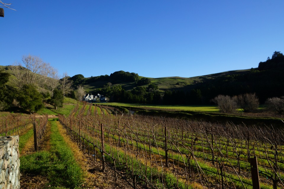 Skywalker Ranch 58