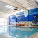Summer Swimming and Safety at Evolution Swim Academy