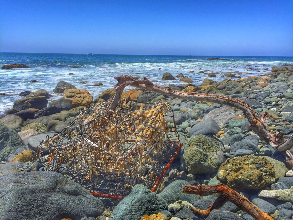 Lobster Cage found on Orange County Beach
