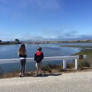 Moss Landing Wildlife Area