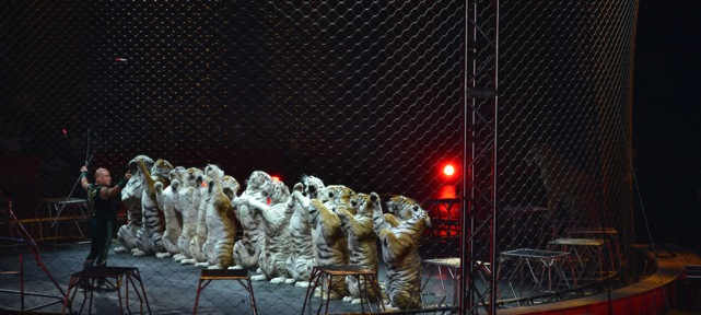 Ringling-Brothers-Circus-12