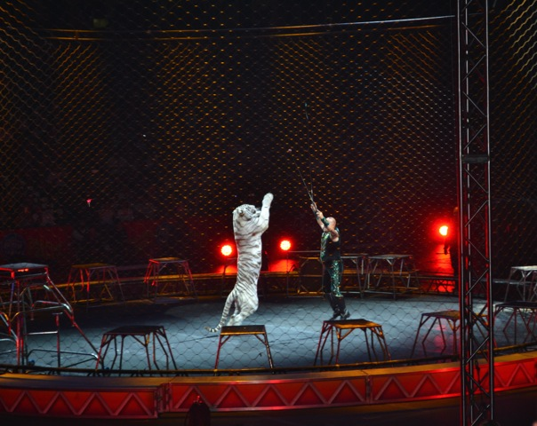 Ringling-Brothers-Circus-13