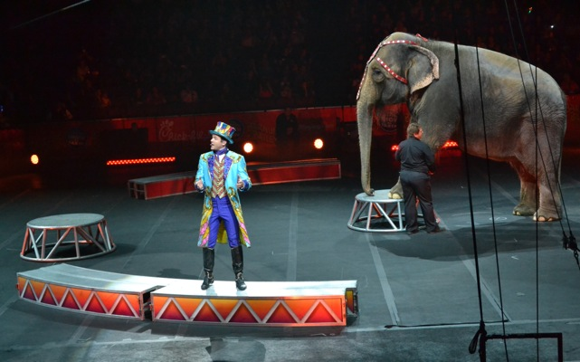 Ringling-Brothers-Circus-29